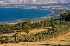 Βόρειο Ισραήλ Στοκ Εικόνα