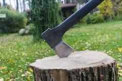 βόρειο κολόβωμα του Μαυροβουνίου τσεκουριών Τσεκούρι έτοιμο για την τέμνουσα ξυλεία Εργαλείο ξυλουργικής Τσεκούρι υλοτόμων στην ξ Στοκ φωτογραφία με δικαίωμα ελεύθερης χρήσης