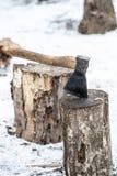 βόρειο κολόβωμα του Μαυροβουνίου τσεκουριών Στοκ φωτογραφία με δικαίωμα ελεύθερης χρήσης