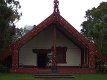 Βόρειο νησί Νέα Ζηλανδία στοκ εικόνες