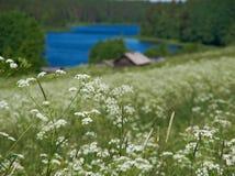 βόρειο ρωσικό χωριό Στοκ εικόνες με δικαίωμα ελεύθερης χρήσης