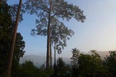 Βόρειο τοπίο βουνών της Ταϊλάνδης φυσικό Στοκ εικόνα με δικαίωμα ελεύθερης χρήσης