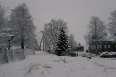 Βόρειο χωριό στη Ρωσία Στοκ φωτογραφίες με δικαίωμα ελεύθερης χρήσης