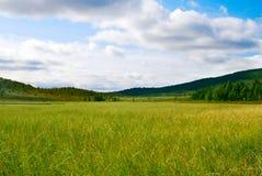 βόρειο tundra στοκ φωτογραφία με δικαίωμα ελεύθερης χρήσης