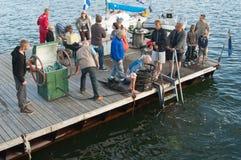 Βύθιση του δύτη στις ημέρες θάλασσας του Ταλίν Στοκ εικόνα με δικαίωμα ελεύθερης χρήσης