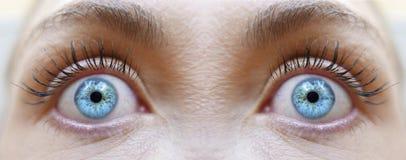 Βλέμμα Hypnotized, μπλε χρώμα ματιών κοριτσιών Στοκ εικόνες με δικαίωμα ελεύθερης χρήσης