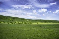 Πράσινο βουνό Στοκ Εικόνα
