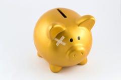 Βλαμμένη τράπεζα έννοια Piggy Στοκ Φωτογραφίες