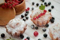 Βλασταημένος του αγγλικού muffin βακκινίου και της κόκκινων ή μαύρων σταφίδας και της ζάχαρης Στοκ εικόνες με δικαίωμα ελεύθερης χρήσης