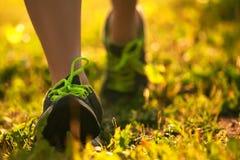 Βλασταημένος των αθλητικών παπουτσιών στο υπόβαθρο της χλόης Στοκ εικόνες με δικαίωμα ελεύθερης χρήσης