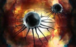 Βλαστικό κύτταρο απεικόνιση αποθεμάτων