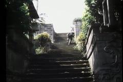 Βλαστός έξω στην υπαίθρια σκάλα απόθεμα βίντεο
