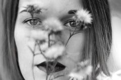 Βλαστός φωτογραφιών στη φύση Στοκ Εικόνα