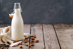 Γάλα αμυγδάλων στο μπουκάλι με τα καρύδια αμυγδάλων στον ξύλινο πίνακα στο γκρίζο υπόβαθρο, διάστημα αντιγράφων Εναλλακτικά τρόφι στοκ φωτογραφία με δικαίωμα ελεύθερης χρήσης
