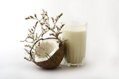 γάλα γυαλιού καρύδων Στοκ φωτογραφία με δικαίωμα ελεύθερης χρήσης