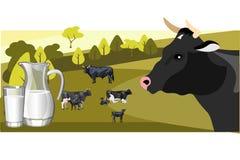 Γάλα και γαλακτοκομείο σε ένα υπόβαθρο των πράσινων αγελάδων χορτοταπήτων και κοπαδιών διανυσματική απεικόνιση