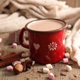Γάλα με το κακάο στοκ φωτογραφίες με δικαίωμα ελεύθερης χρήσης