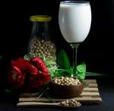 Γάλα σόγιας και σπόρος σόγιας Στοκ Εικόνα