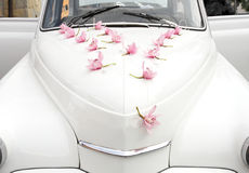 γάμος αυτοκινήτων στοκ εικόνες