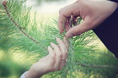 γάμος δαχτυλιδιών χεριών Στοκ φωτογραφίες με δικαίωμα ελεύθερης χρήσης