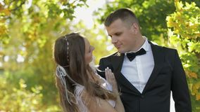 γάμος δεσμών κοσμήματος κρυστάλλου λαιμοδετών ζευγών Καλοί νεόνυμφος και νύφη οικογένεια ευτυχής Άνδρας και γυναίκα ερωτευμένοι ε φιλμ μικρού μήκους