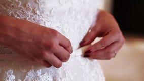 Γάμος ζωνών που ντύνεται απόθεμα βίντεο