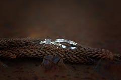 Γάμος και δαχτυλίδια αρραβώνων νυφών ` s σε έναν κώνο πεύκων Στοκ Εικόνα