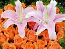 γάμος λήψης λουλουδιών Στοκ φωτογραφίες με δικαίωμα ελεύθερης χρήσης