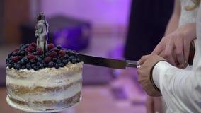 γάμος νεόνυμφων κοπής κέικ νυφών απόθεμα βίντεο