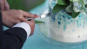 γάμος νεόνυμφων κοπής κέικ νυφών φιλμ μικρού μήκους