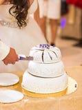γάμος νεόνυμφων κοπής κέικ νυφών Στοκ Φωτογραφία