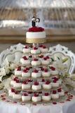 γάμος 8 πιτών Στοκ φωτογραφίες με δικαίωμα ελεύθερης χρήσης
