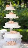 γάμος 8 πιτών Στοκ Εικόνες
