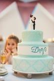 γάμος 8 πιτών Στοκ Φωτογραφία