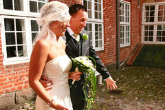 γάμος ρυζιού ζευγών Στοκ Εικόνες