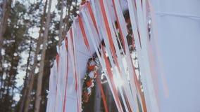 Γάμος τόξων στον ήλιο στο δάσος απόθεμα βίντεο