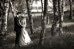 γάμος φιλήματος ζευγών στοκ φωτογραφία με δικαίωμα ελεύθερης χρήσης