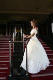 γάμος φορεμάτων έννοιας νυφών Στοκ εικόνες με δικαίωμα ελεύθερης χρήσης