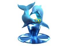 γάμος 02 δαχτυλιδιών δελφινιών Στοκ Εικόνες