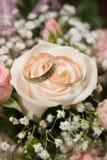 γάμος 2 δαχτυλιδιών Στοκ Φωτογραφίες