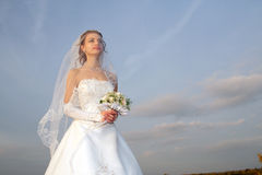 γάμος Στοκ Εικόνες