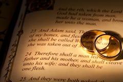 γάμος Adam s στοκ φωτογραφία με δικαίωμα ελεύθερης χρήσης