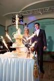 γάμος sparklers κέικ newlyweds Στοκ Εικόνες