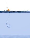 Γάντζος ψαριών στο νερό Στοκ φωτογραφία με δικαίωμα ελεύθερης χρήσης