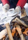 Γάντια καφέ και χειμώνα στοκ εικόνες