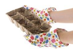 γάντια κηπουρών λιπάσματο&si Στοκ Φωτογραφίες