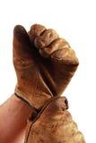 γάντια που βάζουν την εργ&alp Στοκ φωτογραφία με δικαίωμα ελεύθερης χρήσης