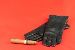 γάντια πούρων Στοκ εικόνα με δικαίωμα ελεύθερης χρήσης