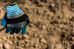 Γάντια στο αγρόκτημα καλαμποκιού Στοκ Φωτογραφίες