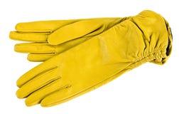 γάντια Στοκ φωτογραφίες με δικαίωμα ελεύθερης χρήσης